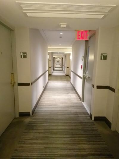 綺麗で静かな廊下。