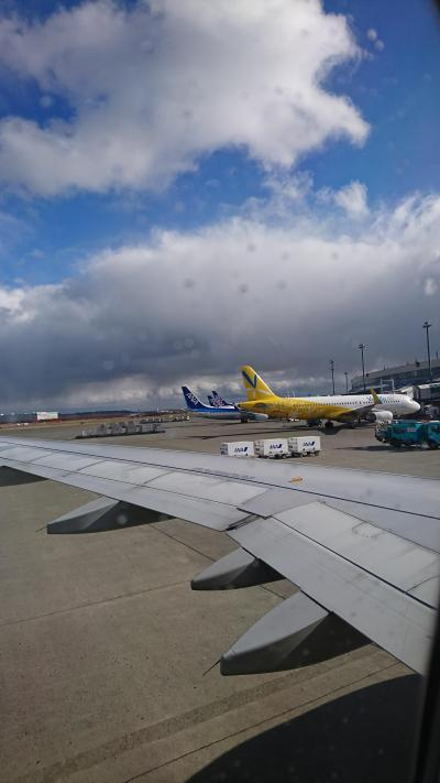 行きの成田は晴れてます^^<br />こちらも初めてのバニラエア。