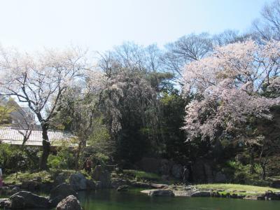 靖国神社の庭