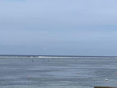 釣り人がいっぱい!