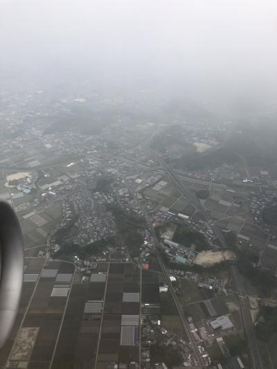 飛行機からの地上、綺麗なんで