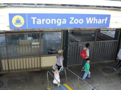 フェリーに乗ってタロンガ動物園へ行きました。