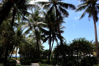 マジ、最高のお天気♪<br />乾期のフーコック島、なんて素晴らしいの。<br />青い空、爽やかで暖かい気候に心が躍る…早くプールサイドでのんびりしなくちゃ!!