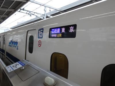 大阪の友達が6時台の新幹線で名古屋まで来て<br />名古屋から4人でツアーに参加です<br /><br />JR名古屋駅7:29発こだま632号 JR小田原駅着9:37