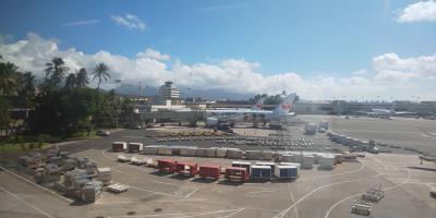 ホノルル到着。JALは嵐ジェットです。