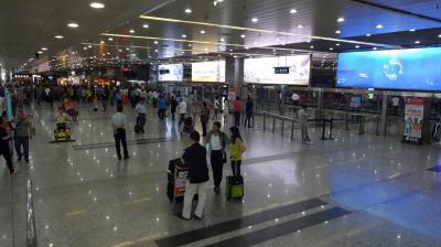 成田から瀋陽桃仙国際空港へ<br />10時10分に成田空港を飛び立った全日空NH925便は、シートモニターがなかったので機内唯一の楽しみである映画を見ることができず、オーディオプログラムで落語をずっと聴いていた。ANAのチケットは、ぎりぎり残っていたマイレージで手に入れた。 <br />12時40分に瀋陽桃仙国際空港に着くと、あの何とも懐かしい中国の匂いが鼻をくすぐる。毎回ここに帰ってきたと実感する瞬間だ。