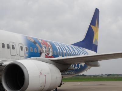 SKY791  8:35 新千歳空港へ<br />日本ハム仕様機体で席のヘッドカバーもファイターズでした。