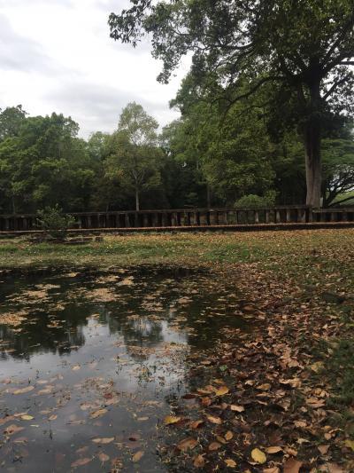バプーオン寺院の池です。