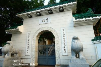 さて、萬佛寺からおりてきて、そのまま寶福山へ。<br /><br />ちなみにこの前に娘の出生届を出しに来た沙田政府の建物があります。