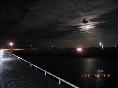 1130(月)大潮。満潮6時と17時半。干潮12時前。月入り6時過ぎ。月の出17時前。最低気温8℃。風速朝3m昼5m。橋脚の6つ目すぐ右横。<br />ギンガメアジ28センチ1匹。セイゴ31センチ1匹。<br />