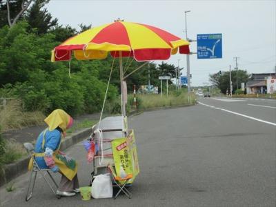 秋田名物のババヘラアイス.これを見ると,夏になったなと思います.
