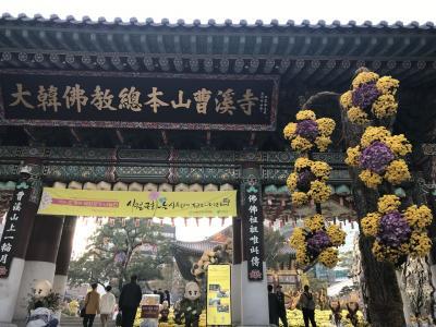 南大門を歩いて行き着いた総本山曹渓寺で、<br />菊祭り、寄ってみたら素晴らしかった。