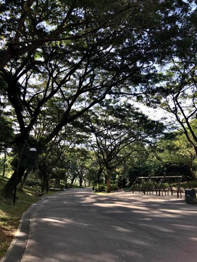 Admiralty parkに行ったことがなかったので、先に寄ってから行くことにしました。
