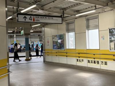 確か新松戸駅で武蔵野線に乗り換えます。<br />この辺り、線路が複雑で関西人にはなかなか難解な地区ですね。