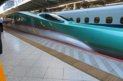 朝9時前の新幹線で東京駅を発ち、