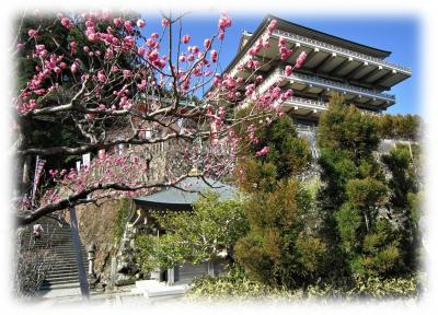 以前掲載した「那智山参拝 熊野古道 大門坂から熊野那智大社」<br />熊野那智大社の鳥居の手前で参道は二手に別れ右に向かうと「青岸渡寺」の仁王門へ続きます。<br />「青岸渡寺」へは敢えて仁王門の石段を上ることなく、熊野那智大社境内の東門と繋がっていて容易に本堂に向かう事が出来ます。<br />それもどうなの、という事で一旦かみさんと別行動、一旦熊野那智大社一ノ鳥居まで戻り仁王門から訪れる事にした。<br />青岸渡寺仁王門<br />