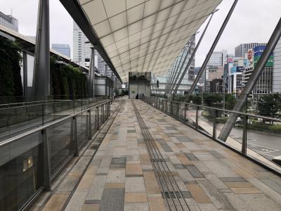 東京駅でパンを買って、バスターミナルの上で食べました。人が全然いなくて穴場。