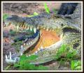 普通の旅に飽きたら....やっぱ、アフリカ ....#9-〔2〕 「チョベ川でボート・サファリ」編(ボツワナ共和国/アフリカ)