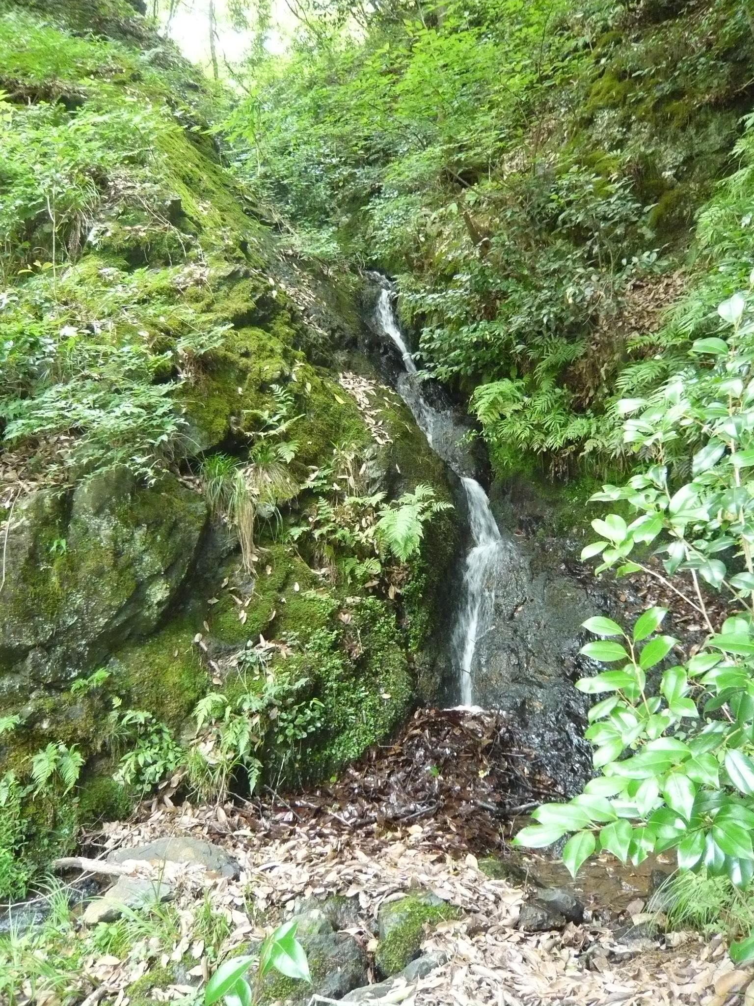 滝紀行◆独鈷の滝(兵庫県丹波市氷上町)