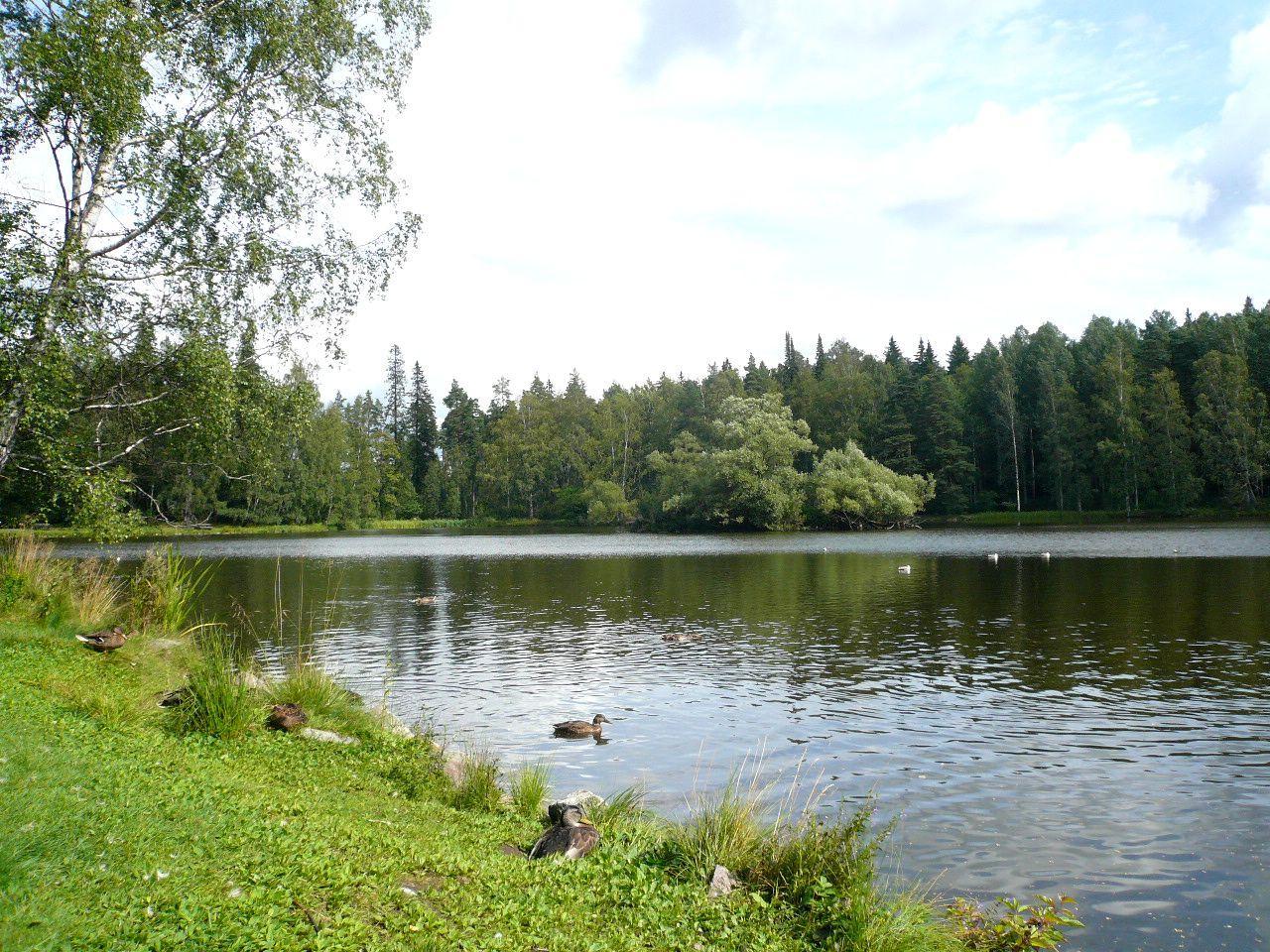 森と湖の国フィンランド デザイン紀行 ~アアルト建築を訪ねて