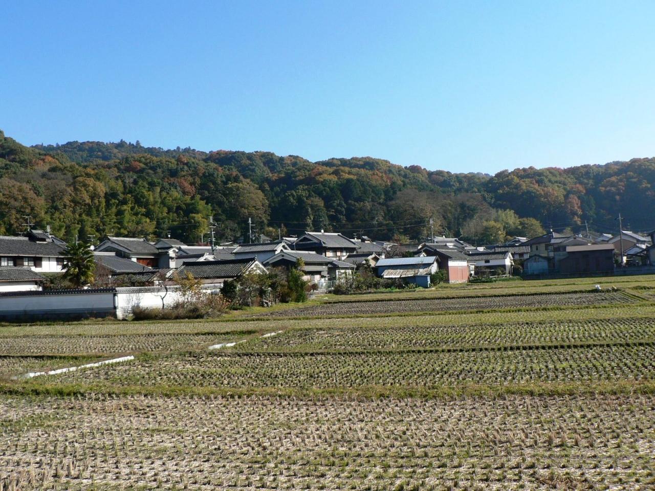 『日本の旅 関西を歩く 奈良、桜井市の海柘榴市(つばいち ...