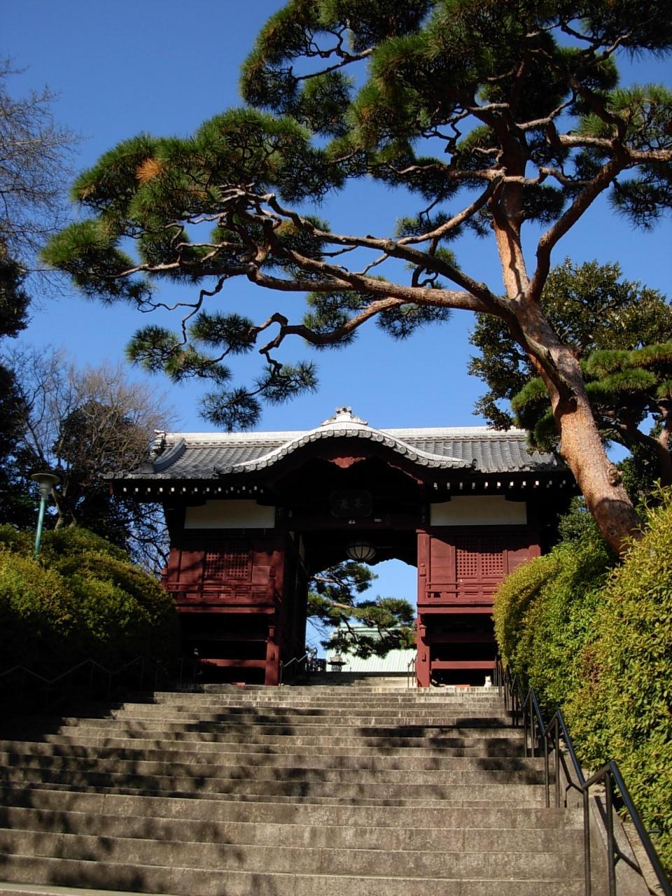 『 音羽 御殿  』 (鳩山 会館)ーーー 師走 の、 護国寺 から、  早稲田  へと・・・ の~んびり!  東京 散歩。
