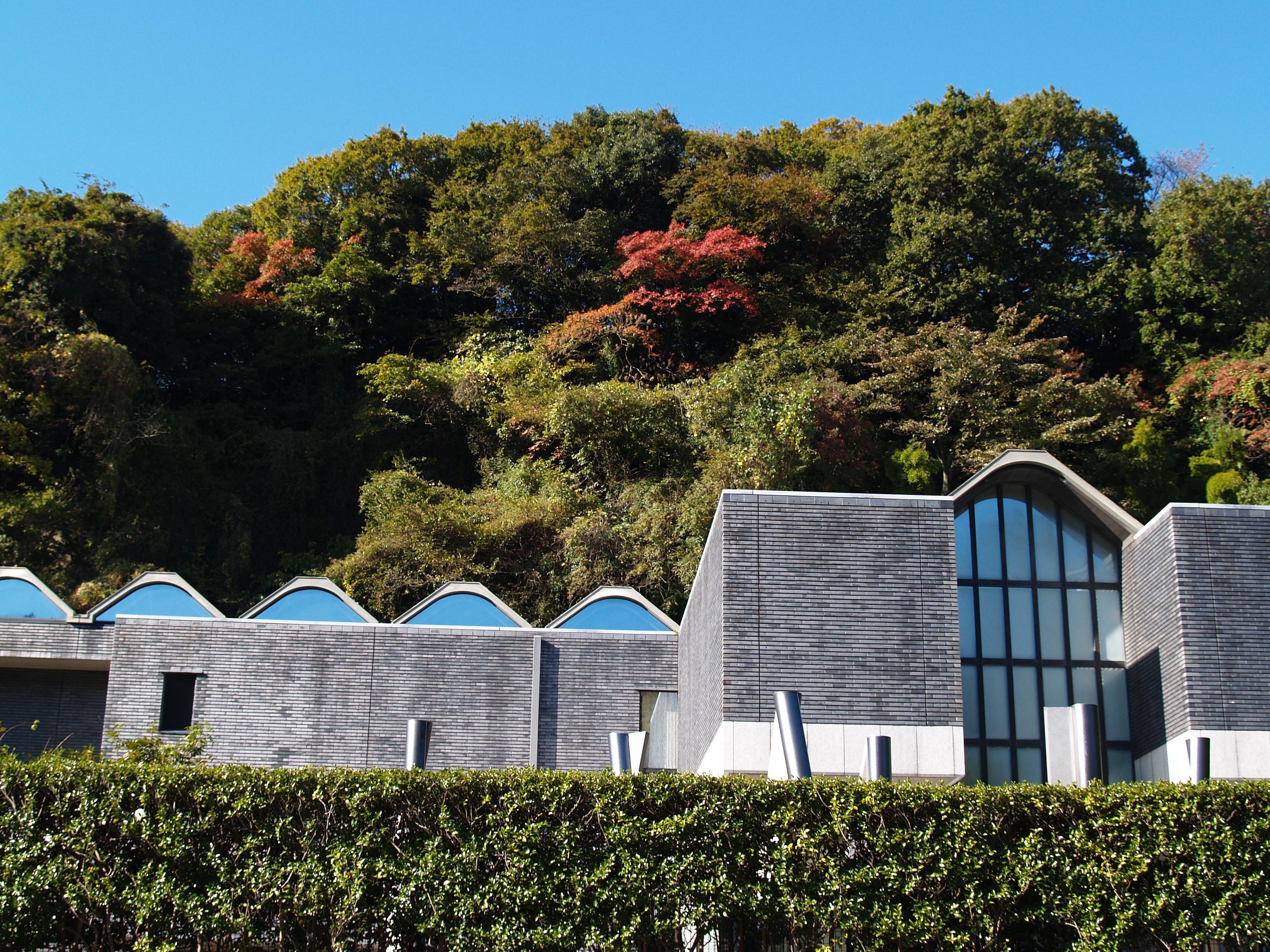 神奈川 県立 近代 美術館 鎌倉 別館