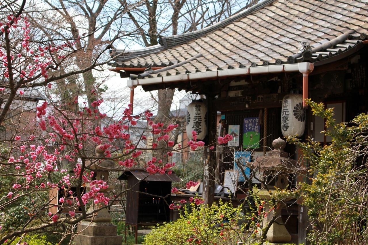 """『お義父さんと歩く""""京都"""" ~ちょこっと西国三十三箇所 巡礼 ..."""