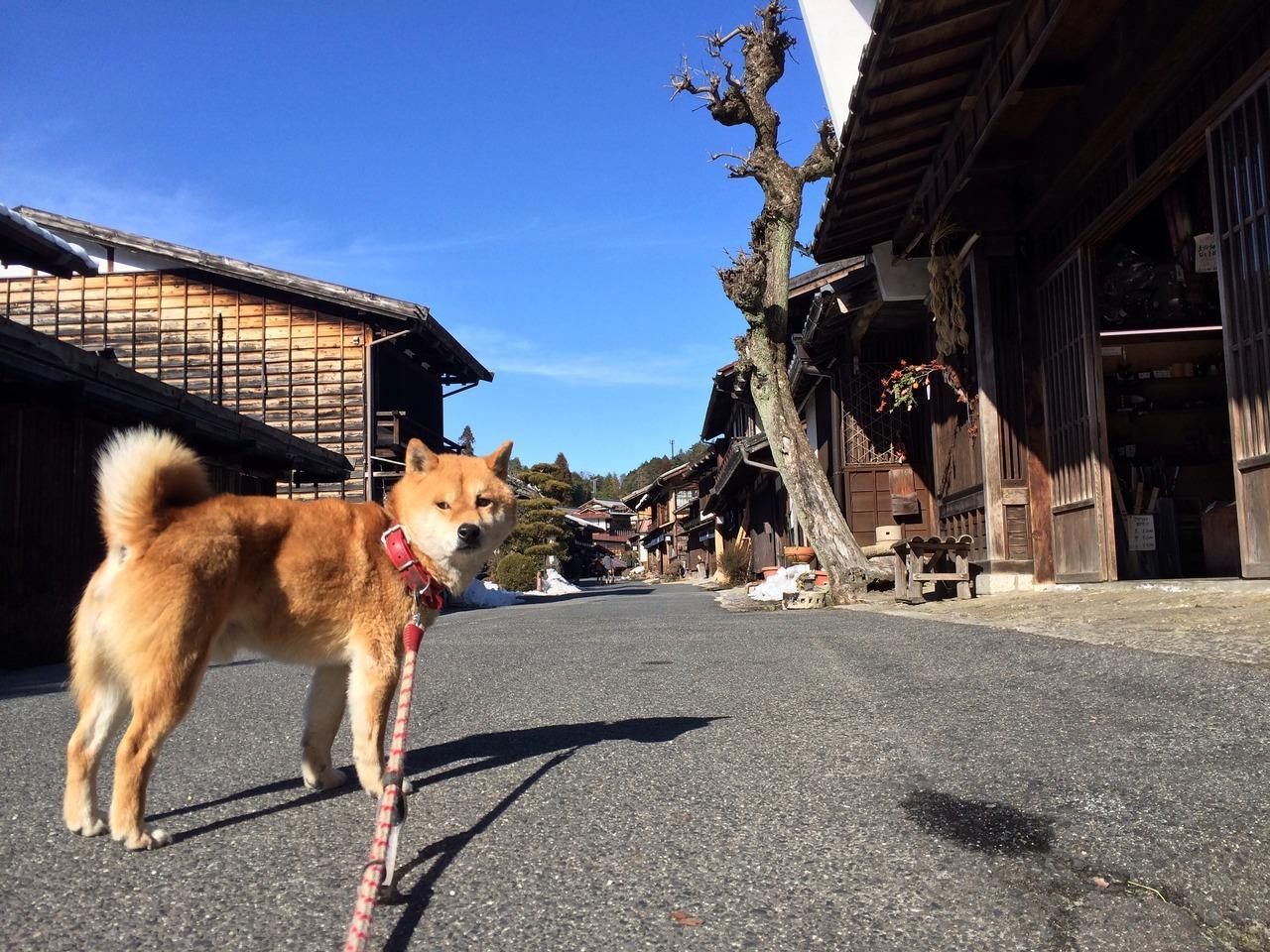 2019 中禅寺湖に至近のホテル・旅館10選【トリッ …