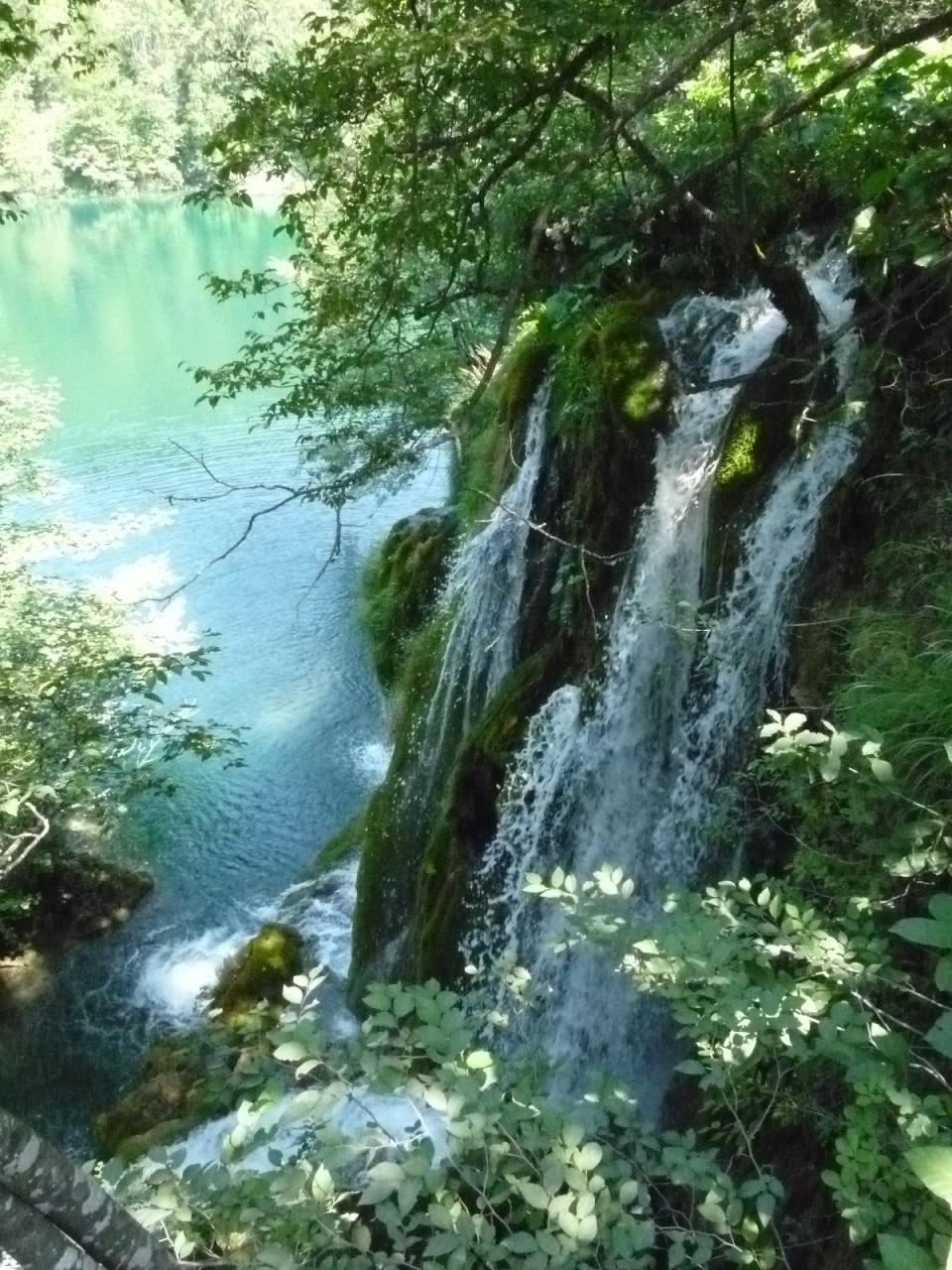エメラルドグリーンのきれいな湖: 『きみは美しすぎるプリトヴィッツェ湖群国立公園』その他の