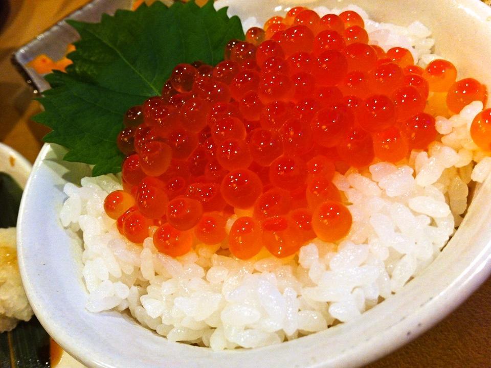 北海道 2012 Oct Day1 関空→新千歳→星野リゾートトマム