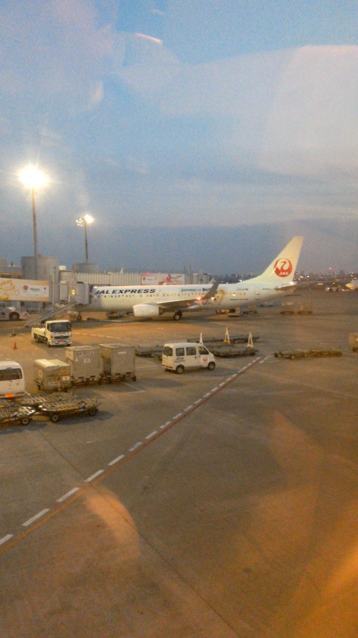 ただ今、jalで移動中(*^-^*) 第11弾>>>>福岡に向けて夜間飛行(=^_