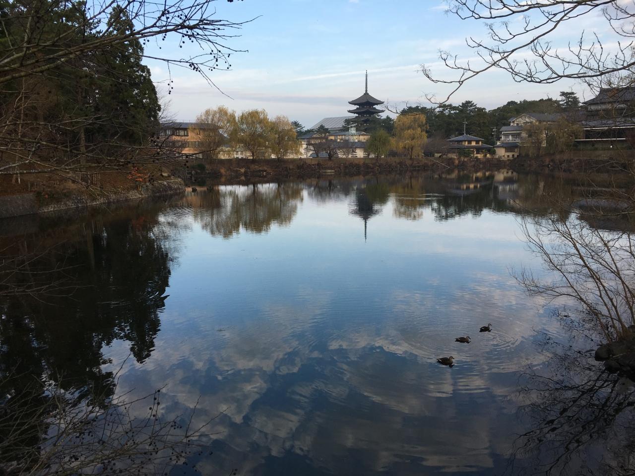 奈良マラソン2015(大会)20キロまで奮闘記
