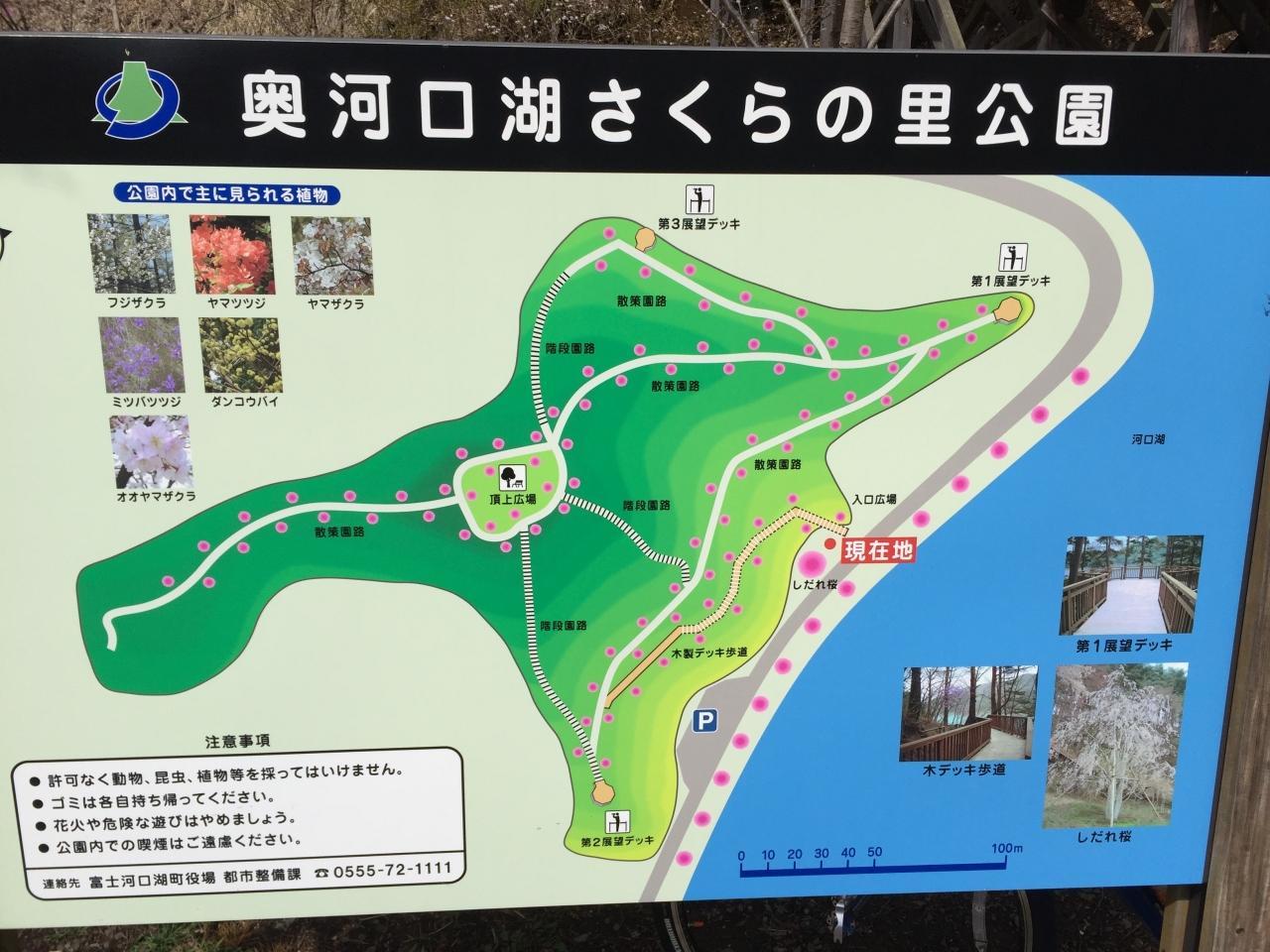 別荘 ヒロミ 河口湖