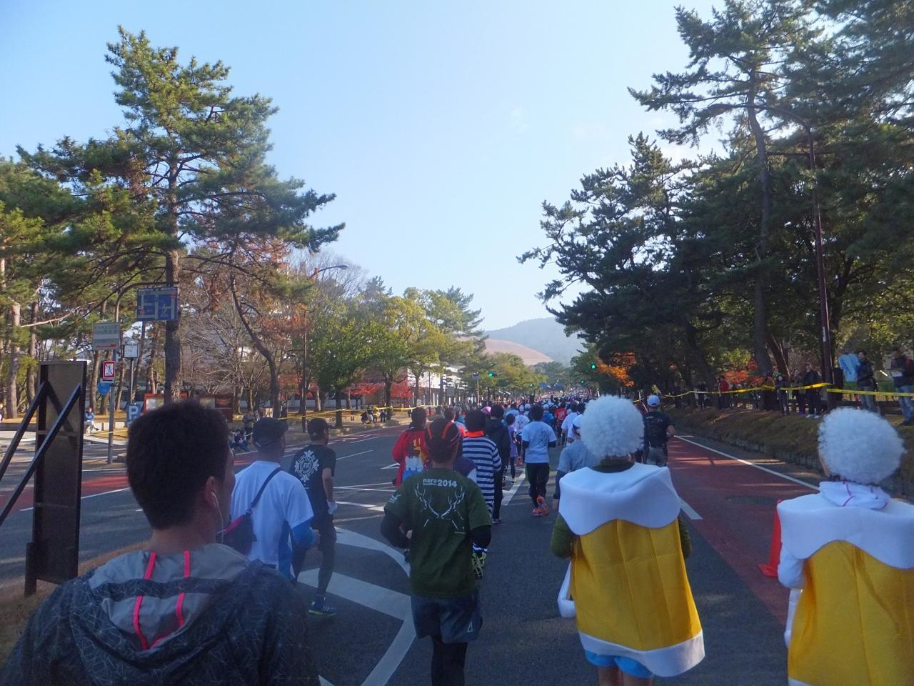 9b14557685 2015 初奈良マラソンと関西観光【その7】近鉄奈良から精華地区へ』奈良 ...