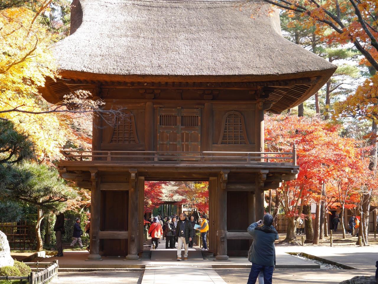 埼玉新座・関東屈指の紅葉人気スポット〝平林寺〟を訪れて