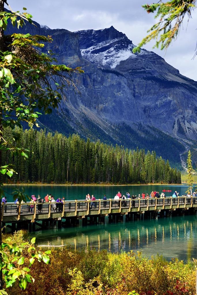 エメラルドグリーンのきれいな湖: 『カナダ(1) エメラルドレイク』カナディアンロッキー(カナダ
