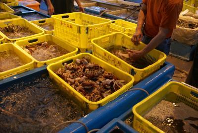 香港仔の魚市場で新鮮な魚貝を見物