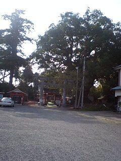 山宮神社と大クスの木