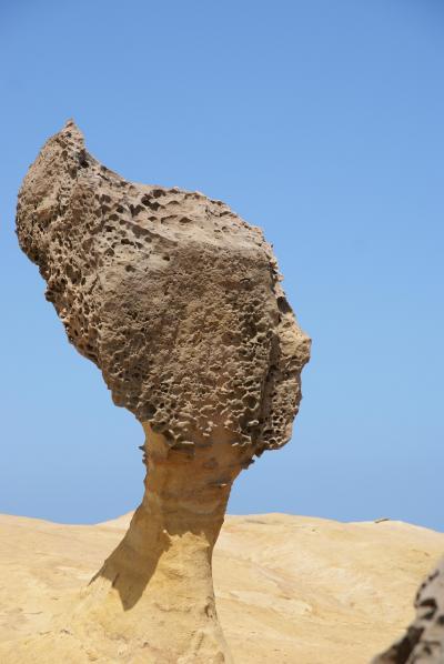 面白い岩がごろごろと 野柳地質公園