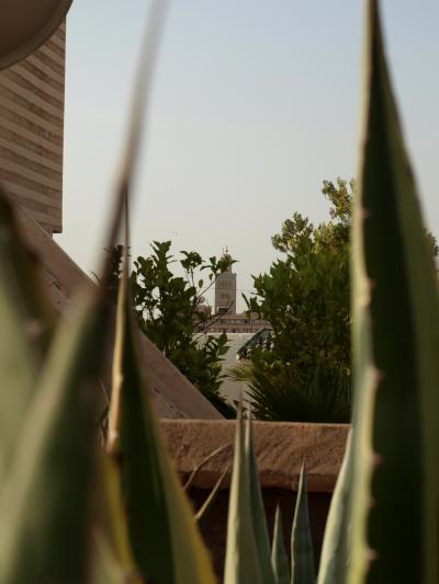 テラスから・・・頑張れば、クトゥビアが見える。