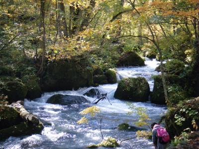 10月の下旬の土日は、マイカー規制、ゆっくりと奥入瀬渓流を・・・。