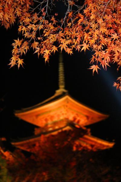 清水寺のライトアップとご朱印と駐車場