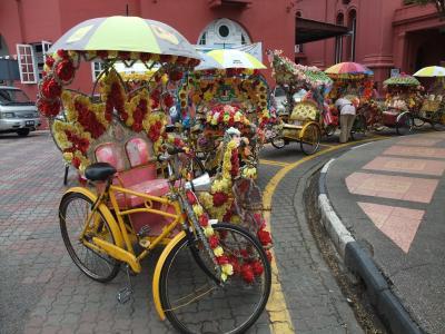 個性豊かな自転車タクシー