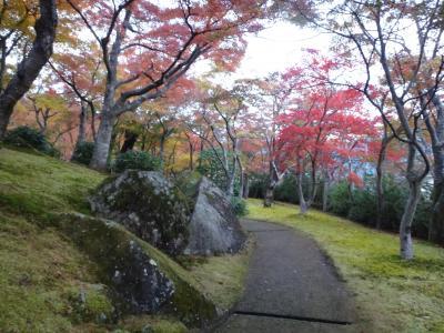 紅葉広がる庭園は圧巻