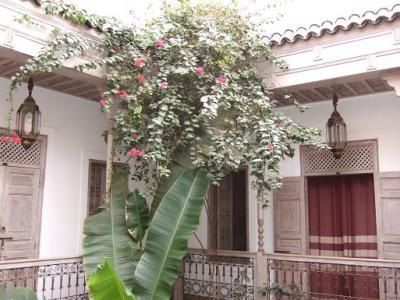 中庭に面して、四方に部屋が配置されているのがリアドの特徴