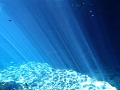 神秘の光のカーテン