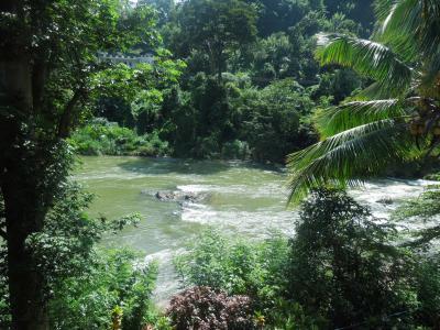 """""""るるぶスリランカ""""にも紹介された、カレーが美味しい川沿いのゲストハウス"""