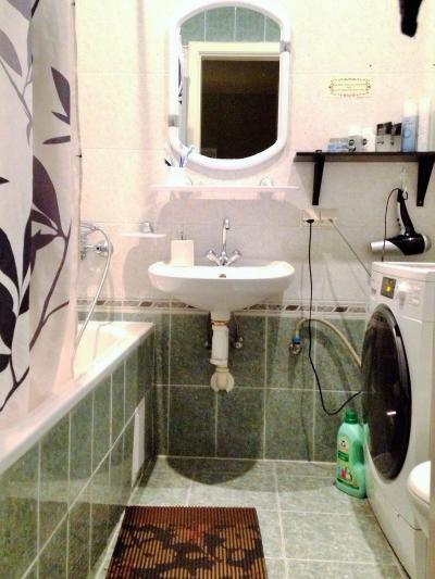 バスタブつきシャワーに洗濯機!