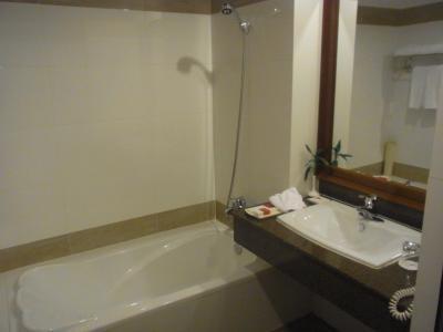 洗面所とシャワー